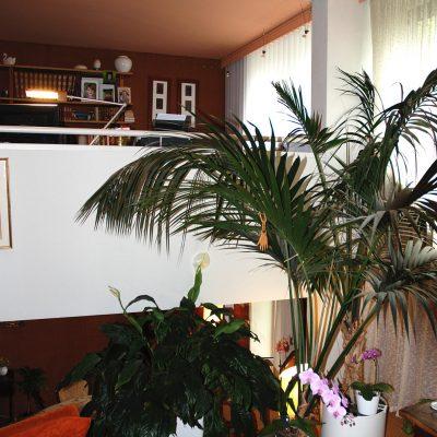 maison-roquebrune-lotissement-jaques-hondelatte-1975-gages11